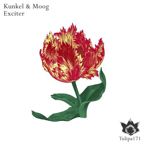 Kunkel & Moog: Exciter / Snippet