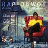 RadioBwoy - Dem No Like Us at All