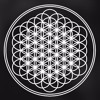 Download Bring Me The Horizon - Can You Feel My Heart (TRIS Remix) Mp3