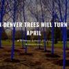 The Scene on Denver's 99.5 The Mountain