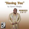 Byron Stingily Having You (2017 Remixes)