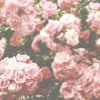 Coldplay - Fix You (Alt Death Remix)
