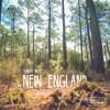 New England - Sunday Muse
