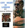 City night in London