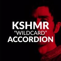 KSHMR Accordion for Serum [FREE SERUM PATCH]