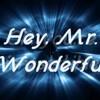 Mr. Wonderful (Lyrics)