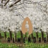 Live @ Almendra Winery & Distillery (4/6/17)