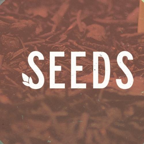 Seeds: week 4