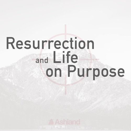 Sermon Excerpt: The Power of Resurrection