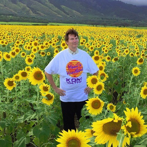 Flying To My Home On The Time Machine To See The Sunflowers
