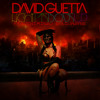 David Guetta - Light My Body Up (feat. Nicki Minaj & Lil Wayne) (RA-OOL Remix)