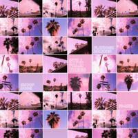 Flatbush Zombies - Still Palm Trees (G-Mix Ft. Snoop Dogg)