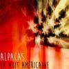 La Nuit Américaine | Cover Lescop by Alpacas