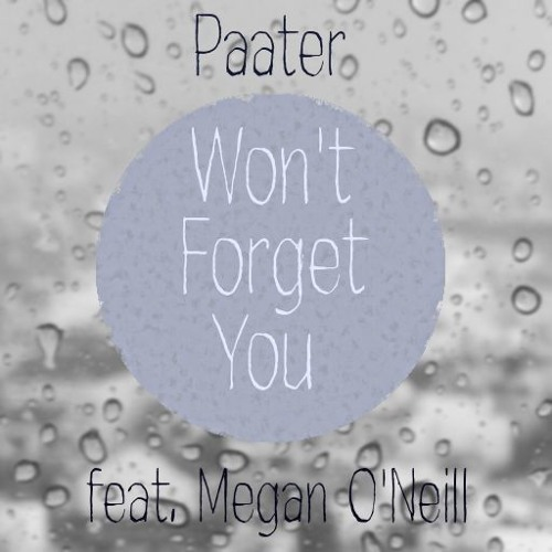 Won't Forget You (feat. Megan O'Neill)