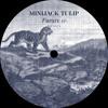 RSP 92.9 - MINIJACK TULIP - FUTURE EP - VINYL SNIPPETS