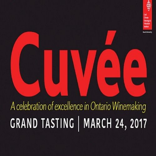 Interviews and Impressions - Cuvee 2017 (episode 41)