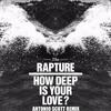 The Rapture - How Deep Is Your Love (Antonio Scott Remix)