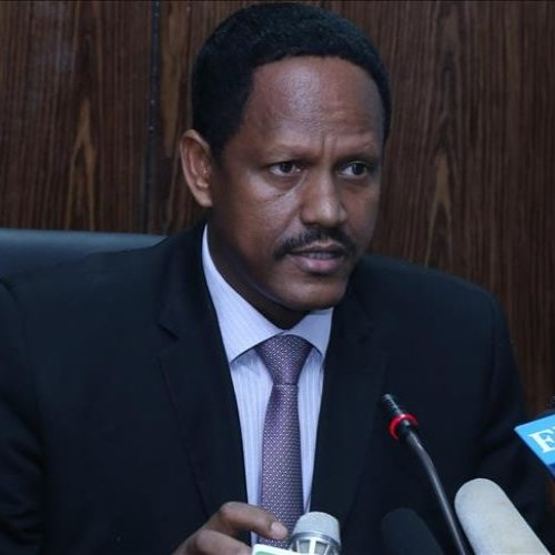 Ethiopia says it is ready to share experience with Egypt in fighting terrorism.