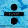 Ed Sheeran Vs. Martin Garrix - Shape Of you, Galaway Girl, Byte, Tremor (Leven-I Mashup)
