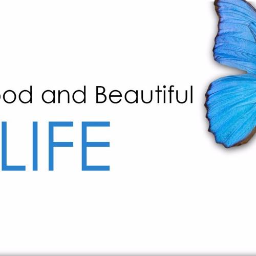 The Good & Beautiful Life -  Part 4