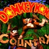 Donkey Kong Country With Lyrics (Brentalfloss)