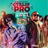 Alkaline & Sean Paul Gyalis Pro (DJZebby Radio Edit)