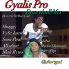 Gyalis Pro ( Dancehall Mix April 2017 )Alkaline, Vybz Kartel, Sean Paul [Dj Rizzzle]