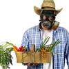 Toxinas de Origen vegetal y Animal