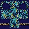 KOZMO x POCKiTZ - Cannabis Sativa