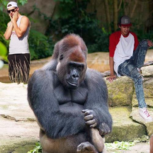 Zoo Pt. 2