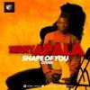Terry Apala - Shape of You