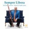 3 Lieder in E Major, Op. 29, TrV 172: No. 1, Traum durch die Dämmerung (Arr. for Bassoon & Piano)