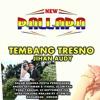 TEMBANG TRESNO - Jihan Audy NEW PALLAPA