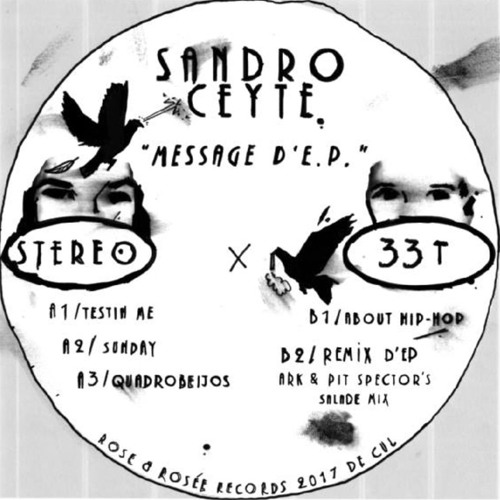 "RER003 - SANDRO CEYTE - Message d'EP ""preview"""