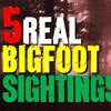 5 Creepy REAL Bigfoot Sightings