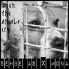 Sehbe As X Mona - When The Angels Cry  (Radio Mix)