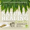 NATURAL HEALING *HIGH GRADE MIX* BY DJ GREEN B (2017)