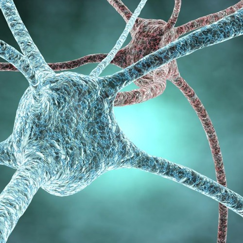 Can we cure neurological disorders by modifying the genome? | Gabriele Lignani