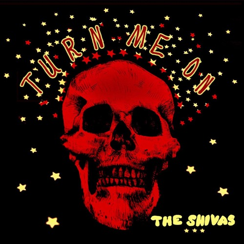 The Shivas - Turn Me On
