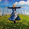 My favorite things - The sound of music *new*