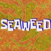 SpongeBob Production Music - Seaweed