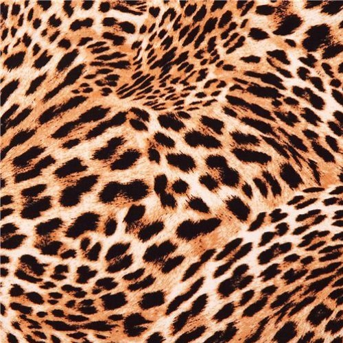 Cheetah Print Swirl