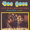 The Bee Gees - Can't Keep A Good Man Down (Green Onions Re-Edit)