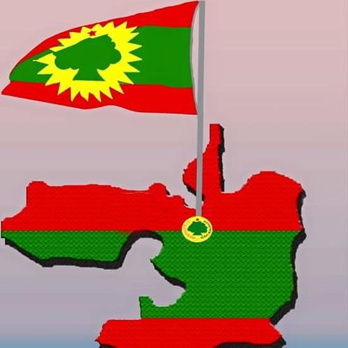 Nasra Yusuf Ft Iskiyas Mezemir- Shaggooyyee \*\*NEW\*\* 2015 (Oromo