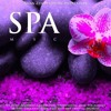 The Best Asian Spa Music
