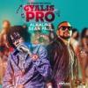 Alkaline Feat. Sean Paul - Gyalis Pro (clean)