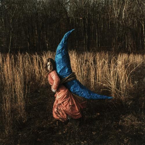 Holly Miranda - Mutual Horse