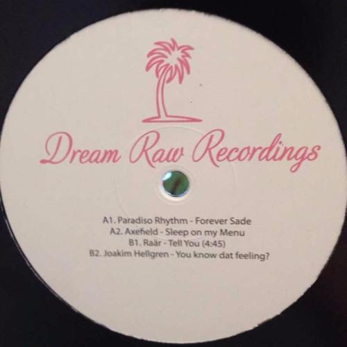 """12"""" V/A DRR006 w/ Paradiso Rhythm, Axefield, Raär, Joakim Hellgren (OUT NOW!!!)"""