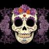 La Francesita - (Dangerous Original) #MINIMAL MEXICANO