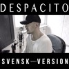 DESPACITO (Svensk Version)+Download